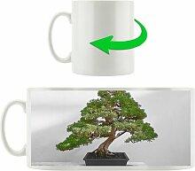 Kaffeebecher Bonsai Baum auf Holztisch East Urban
