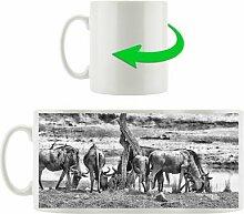 Kaffeebecher Kaffernbüffel Herde in Savanne