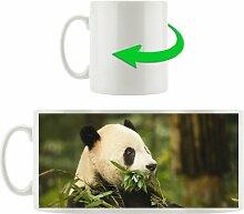 KaffeebecherPanda frisst Bambus