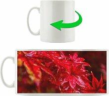 Kaffeebecher Roter Ahorn
