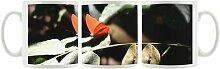 KaffeebecherRoter Schmetterling