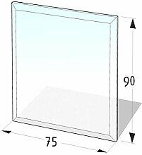 Kamin Glasplatte 6 mm Rechteck 2 mit Facette