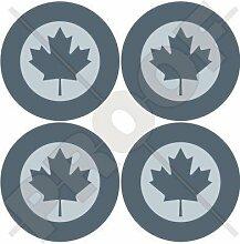KANADA Kanadische Luftwaffe RCAF AIRCOM LowVis