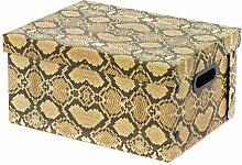 Karton Compactor Python (Set of 4) Bloomsbury