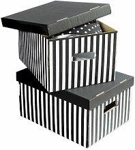 Karton Compactor Stripey (Set of 5) Sommerallee