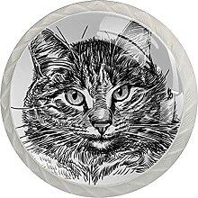 Kat1 Küchenknopf Klarglasschrank Zugschraube