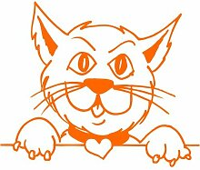 Katze Aufkleber 002, 40 cm, orange
