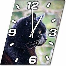 Katze, Design Wanduhr aus Alu Dibond zum Aufhängen, 30 cm Durchmesser, schmale Zeiger, schöne und moderne Wand Dekoration, mit qualitativem Quartz Uhrwerk