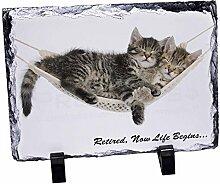 Katzen in der Hängematte, Geschenk zum Ruhestand