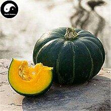 Kaufen Japaness Kürbis-Samen 30pcs Pflanze Diabetes Gemüse Melone Moschus-Kürbis
