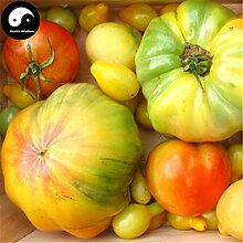 Kaufen Tomaten Gemüsesamen 100pcs Pflanze chinesische Seltene Frucht Tomaten