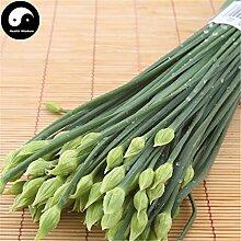 Kaufen Wurzel Leek Samen 400pcs Pflanze Gewürze Gemüse Petersilie Knoblauch-Schnittlauch