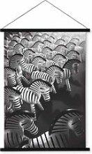 Kay Bojesen - Zebra Foto-Leinwand, 40 x 56 cm