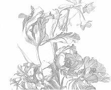 KEK Amsterdam Engraved Flowers I Tapete (8 Bahnen)