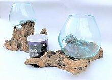 Kenai-Deko 2 Liqva SM, 2 Wurzelholz Designer-Vase