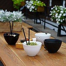 Kenley Set von Große Schalen für Teller östlichen–Reis Ramen Noodle Soup Udon Miso Pho Thai Japanische Asian Curry–2Schüsseln aus Porzellan, Essstäbchen aus Bambus & Löffel aus Keramik