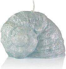 Kerze Muschel Eisblau 120 x 90 mm