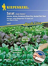 Kiepenkerl Asia Salate Mischung (Saatband)