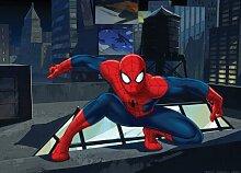 Kinder Fototapete - Spider Man