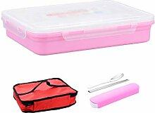 Kinder Lunchboxen Lunchbox Edelstahl isoliert