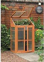 Kingfisher Holz Mini-Gewächshaus, vorbehandelt