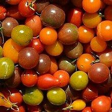 Kirsche Tomatensamen gemischt, 300 Stück Mini