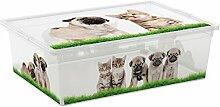 Kiss Kis Aufbewahrungsbox C Box Style Puppy&Kitten