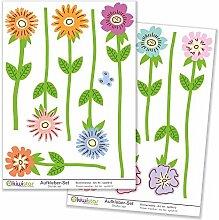 Kiwistar Blumenwiese anlegen, 12 Blumen,
