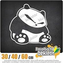KIWISTAR - fieser Panda Heckscheibenaufkleber Carsticker Decal