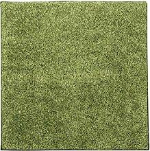 KKCF Nettes quadratisches seidiges Spleißen Ma, Wohnzimmer Carpret, Fußboden-Matte, Schlafzimmer-Wolldecke-Auflage Anti-Rutsch ( farbe : Green4.5cm , größe : 80*80cm )