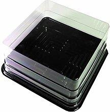 Klarem quadratische Box Deckel mit Schwarz Boden