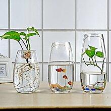 Klarglasvase/wasserglas/wohnzimmer dekoration-A
