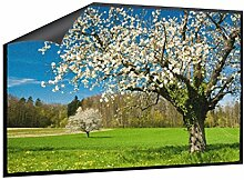 Klebefieber Fußmatte Apfelblüte B x H: 70cm x 50cm