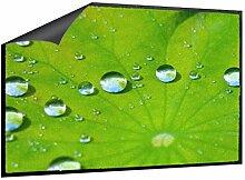 Klebefieber Fußmatte Blatt mit Wassertropfen B x H: 85cm x 60cm