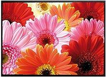 Klebefieber Fußmatte Blütenpracht B x H: 60cm x 40cm