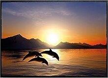 Klebefieber Fußmatte Delfine B x H: 70cm x 50cm