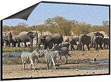 Klebefieber Fußmatte Tiere in Afrika B x H: 70cm