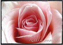 Klebefieber Fußmatte Willkommen Rose B x H: 70cm