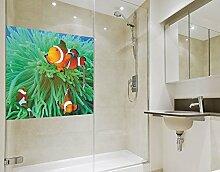 Klebefieber Sichtschutz Anemonenfische B x H: 40cm x 40cm