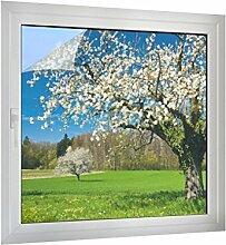 Klebefieber Sichtschutz Apfelblüte B x H: 90cm x 90cm
