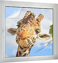 Klebefieber Sichtschutz Giraffe B x H: 50cm x 50cm