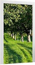 Klebefieber Türtapete Wiese mit Bäumen B x H: 101cm x 200cm