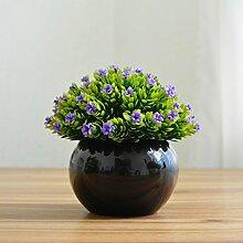 Kleine Kübelpflanzen bonsai Pflanzen Heimtextilien Dekoration Dekoration dekorative Blumentopf Mailand New mini Schreibtisch Simulation, Lila Stern schwarz Porzellan Waschbecken