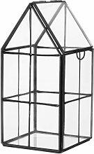 Kleines Gewächshaus aus schwarzem Metall und Glas