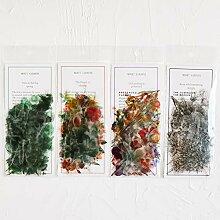 Knaid Blumen-Eukalyptus-Pflanzen-Aufkleber-Set