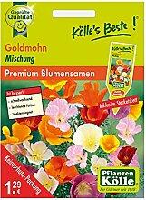 Kölle's Beste Blumensamen Goldmohn (Eschscholzia) Mischung