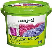 Kölle's Beste Hortensien-Dünger 1 kg