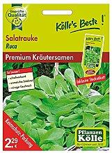 Kölle's Beste Kräutersamen Salatrauke Ruca