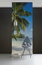 Komar 310-DV1 Vlies Fototapete Coconut BAY-100 x