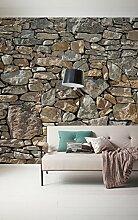 Komar 727-DV3 Vlies Fototapete Stone Wall Tapete,